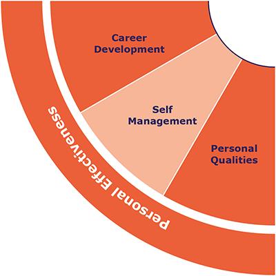IQ-Skills-Wheel-Personal-Effectiveness.png